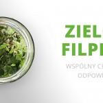 Zielony Filplast